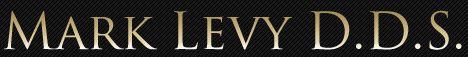 mark levy logo